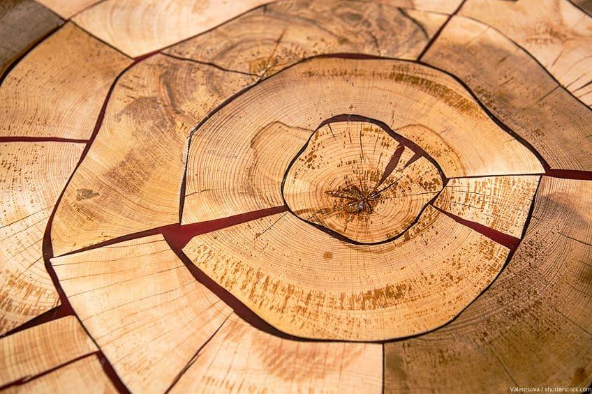 Wood Hardener Reviews