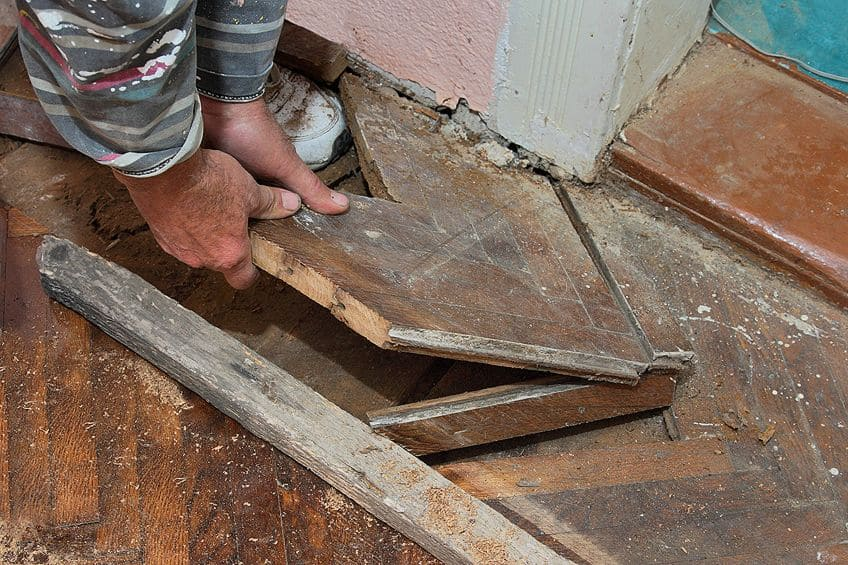 How to Kill Mold on Wood