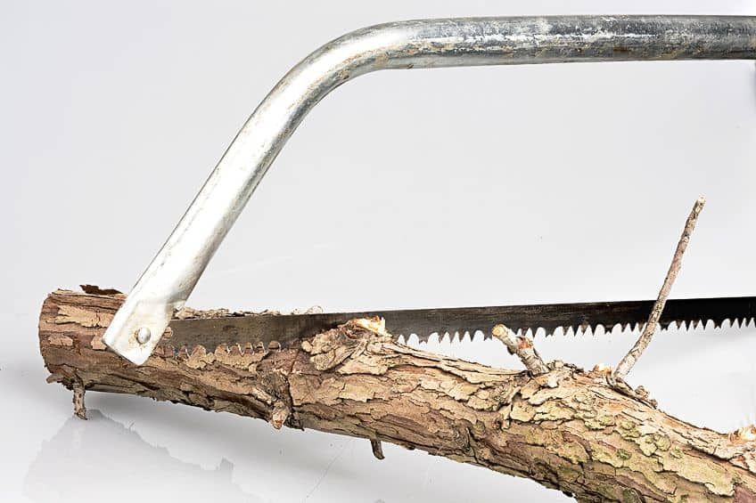 Bow Saw for Cutting Wood
